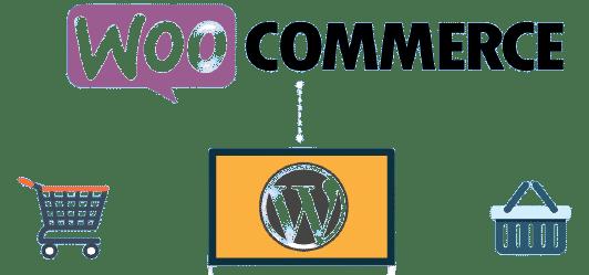 بهترین سیستم مدیریت محتوا برای فروشگاه اینترنتی